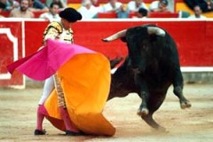 madrid-bullfighting_02